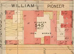 William Pioneer Map 250W