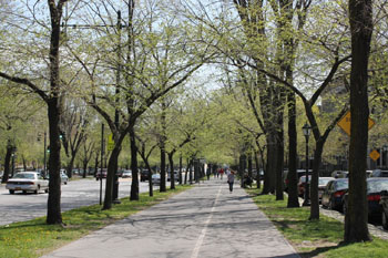 Eastern Parkway pedestrian promenade 350 W
